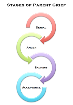 Stages of Parent Grief